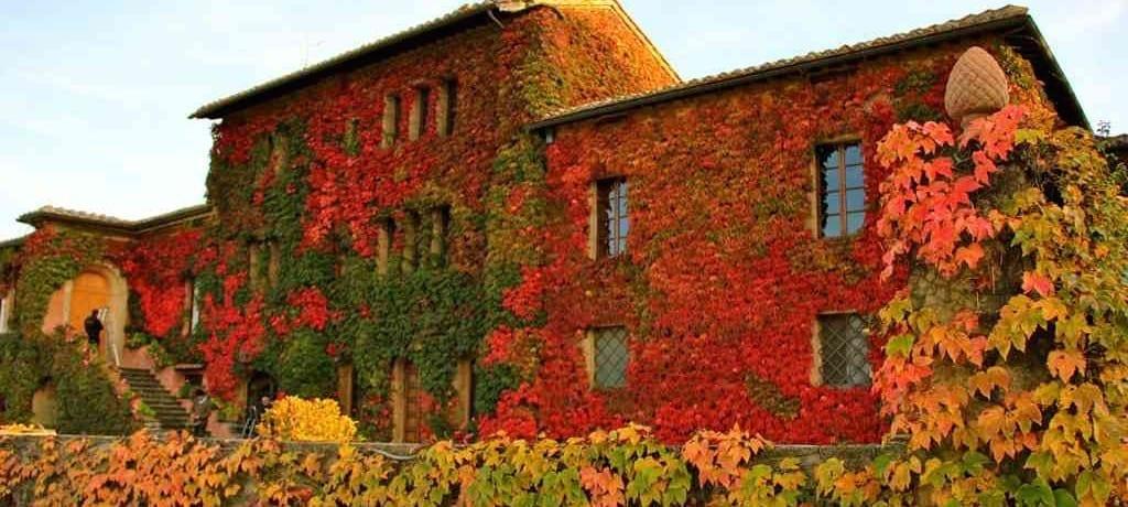 Muito além dos vinhos na Toscana