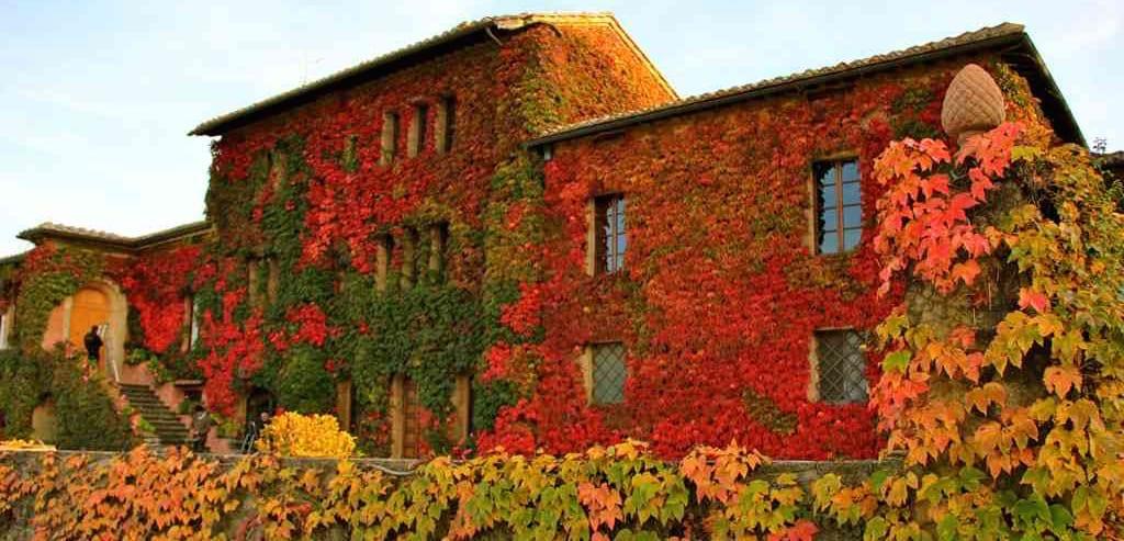 vinicola na Toscana
