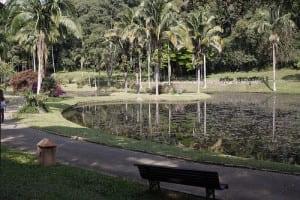 1 Jardim Botânico
