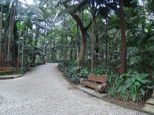 parque trianon masp