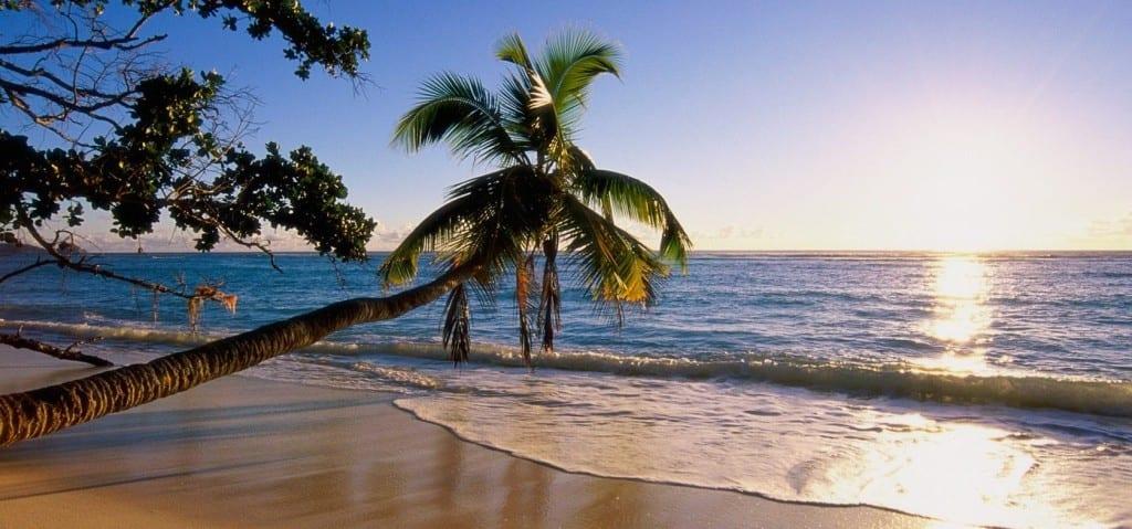 lua-de-mel-em-seychelles 1