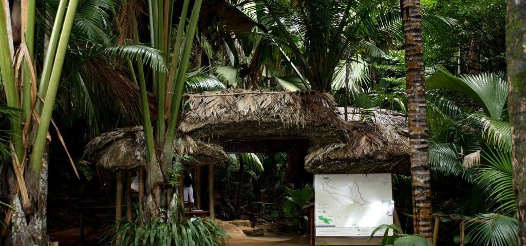 lua-de-mel-em-seychelles 6