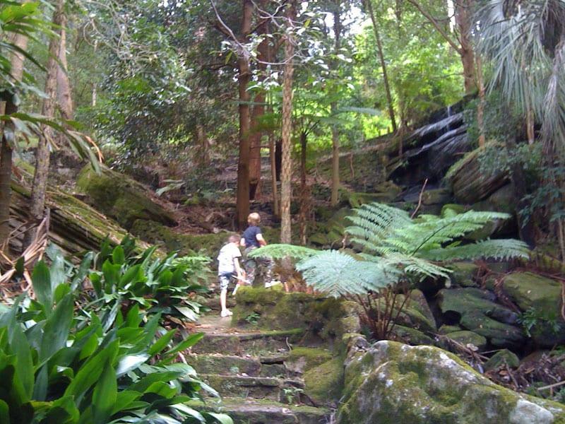 Cooper-Park-Sydney-Guide-1