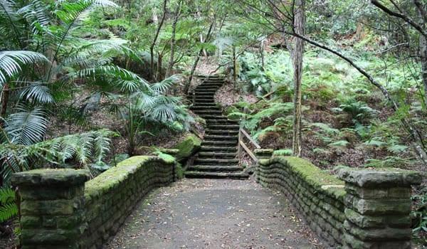 Cooper-Park-Sydney-Guide