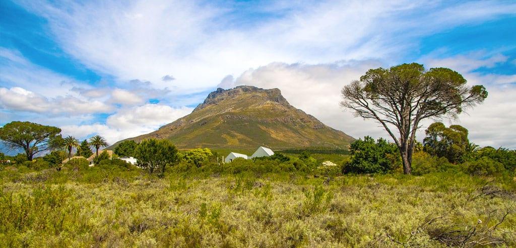 Rota dos vinhos na África do Sul stellenbosch